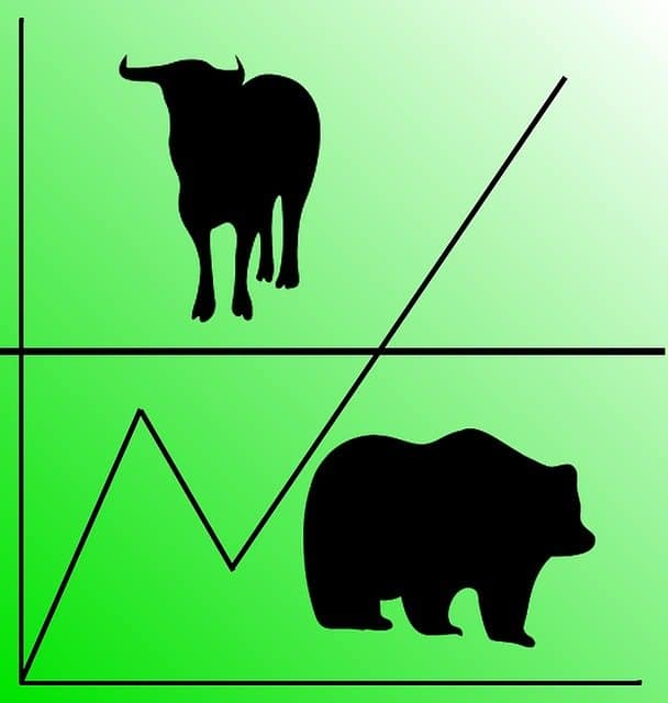 bull-and-bear-images
