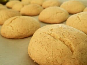 Connecticut Snickerdoodle cookies courtesy of Pixabay