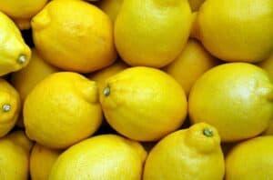 Rhode Island lemons courtesy of pixabay