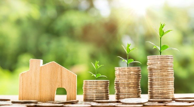 house-and-money-growing